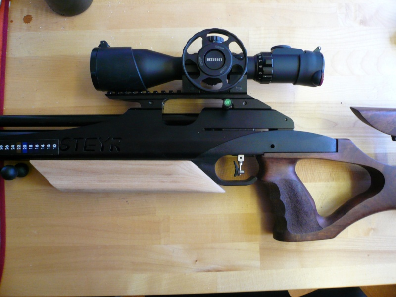 Ma Steyr Hunter custom  P1040812