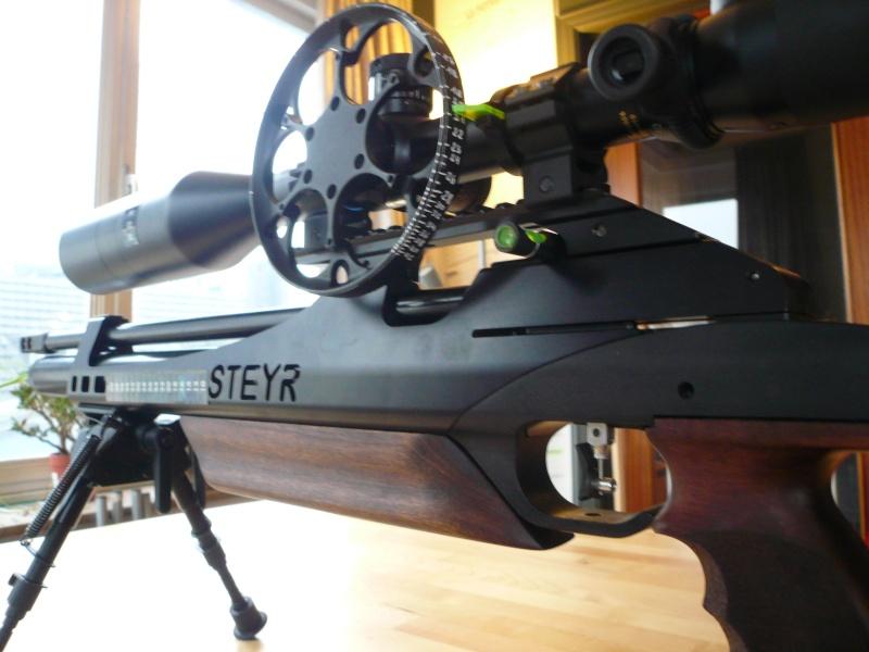 Ma Steyr Hunter custom  P1040823