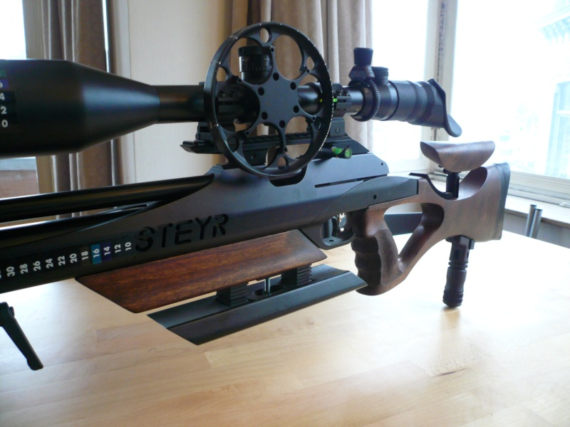 Ma Steyr Hunter custom  P1040911