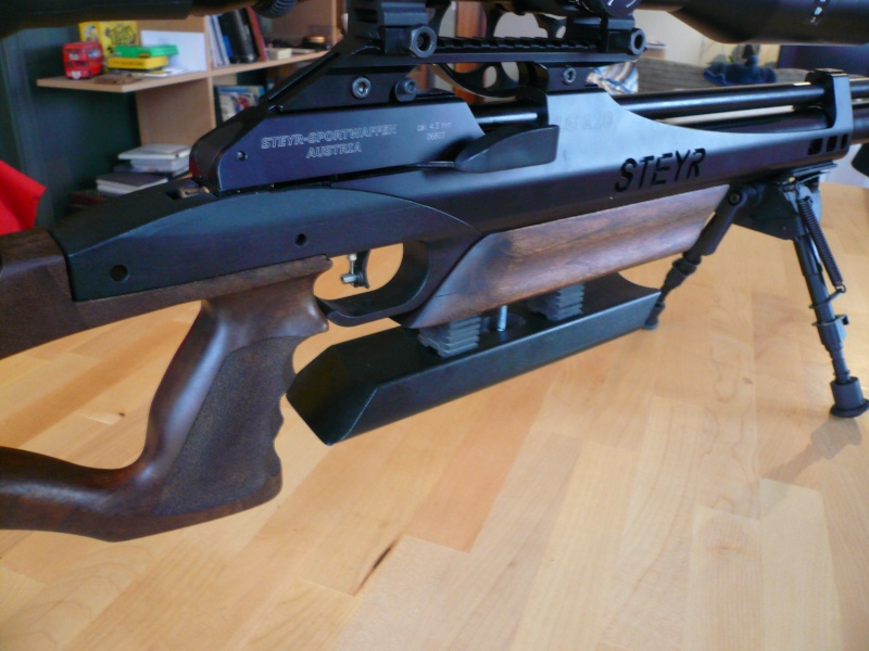 Ma Steyr Hunter custom  P1040912