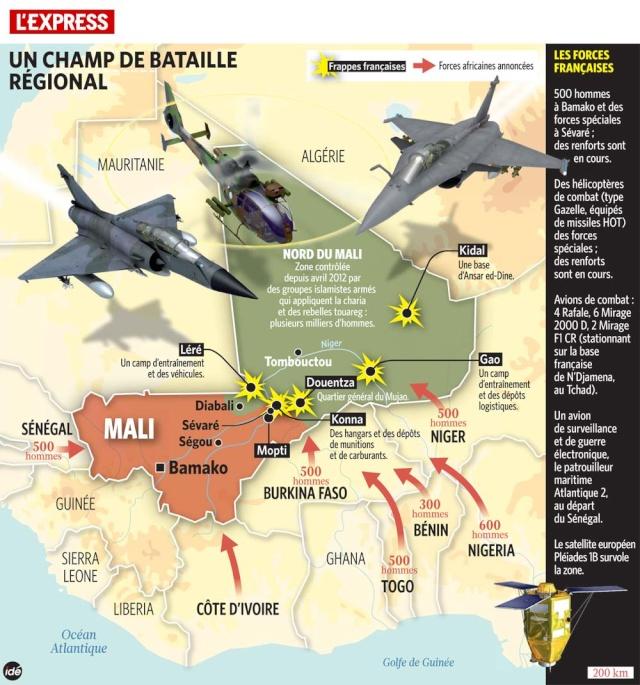L'intervention militaire française au Mali vise-t-elle à assurer les intérêts d'Areva ? 113