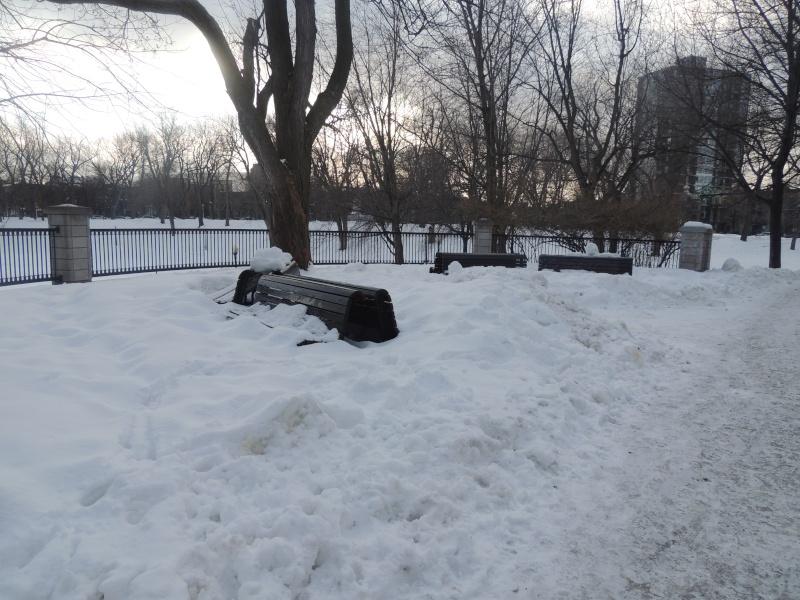 TR Montreal + New York du 19 Janvier au O6 Février 2O13 - Page 3 Dscn0710