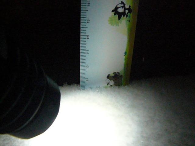 la neige... la neige Galett11