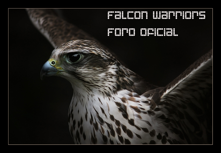 FALCON WARRIORS