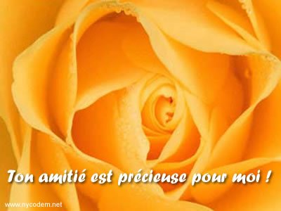 Poèmes d' Amitié 25737110