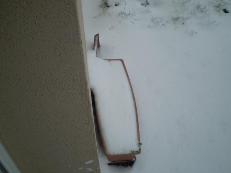 Neige sur le val st père et Avranches Neige_14
