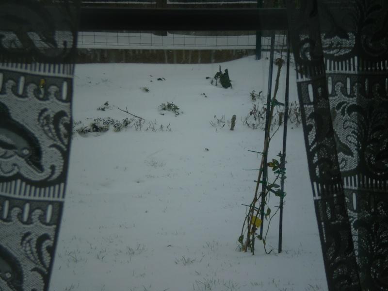 Neige sur le val st père et Avranches Neige_15