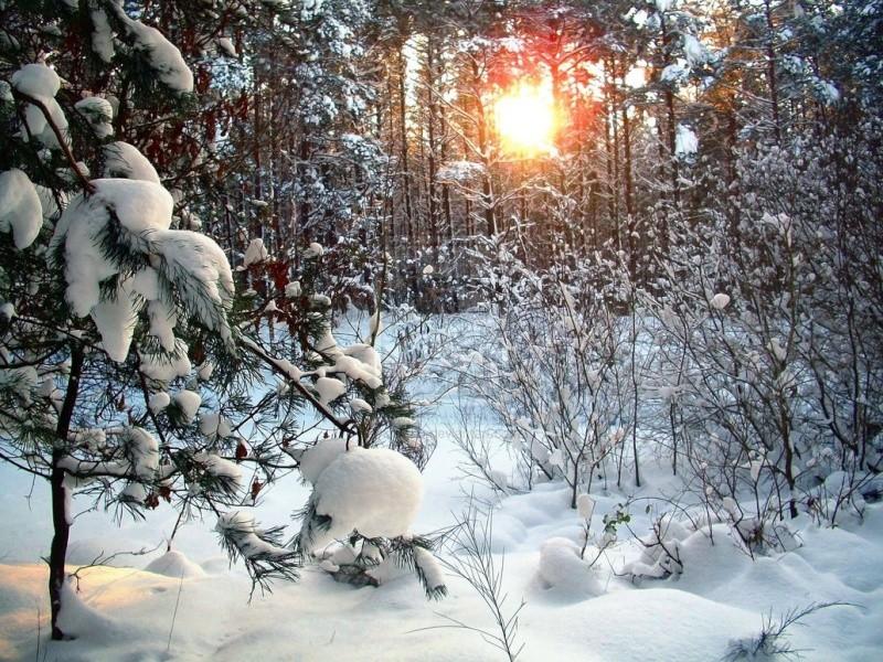 Belles Images trouvés sur le net Winter10