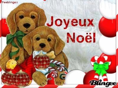 Gli amici dei miei amici sono miei amici Natale11