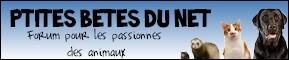 PTITES BÊTES DU NET 54506810