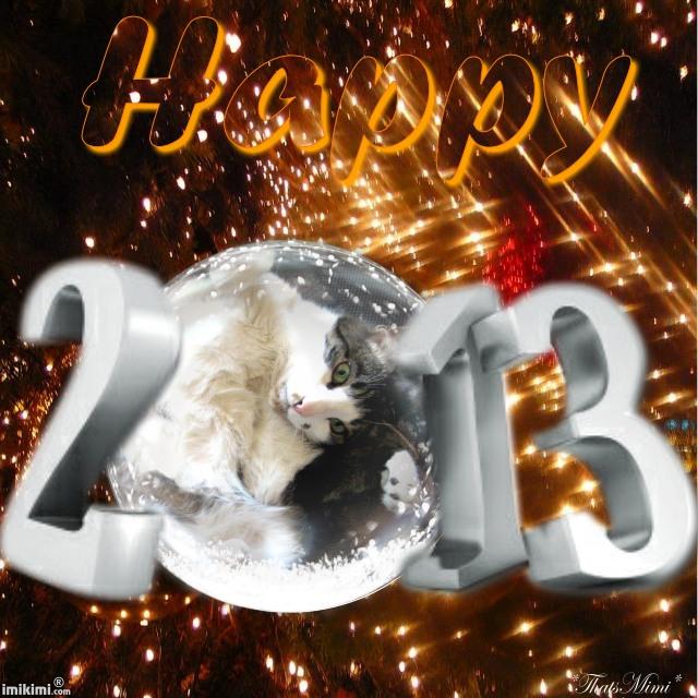 Bonne année 2013 ! 149s8-15