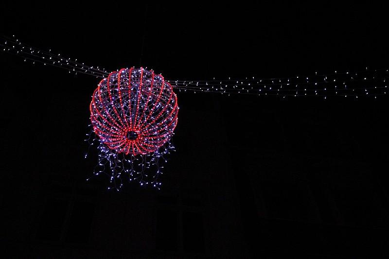 Sortie Faune + Marché de Noël Bruxelles le 19 décembre 2009: Les Photos. Img_0710