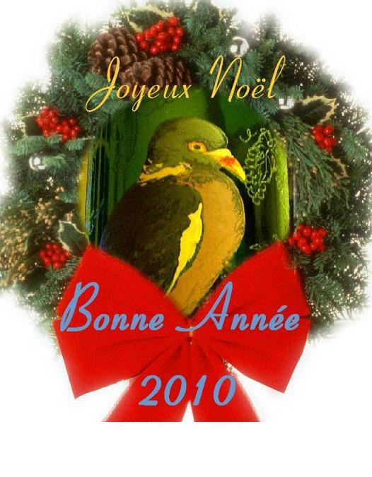 Bonnes fêtes Jn_ba210