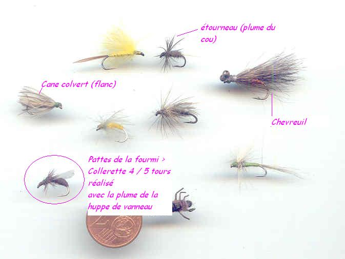 Mouches & gibiers M_3_d10