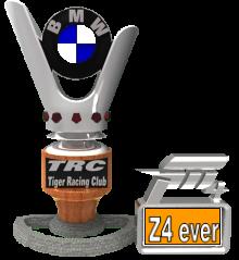 [ONE NIGHT] Z 4EVER Regolamento Bmw-210