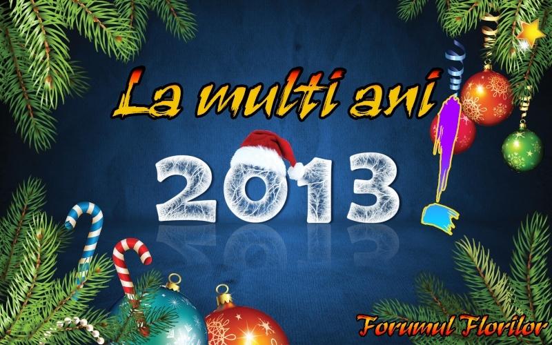 La multi ani 2013!!! Anul-n12