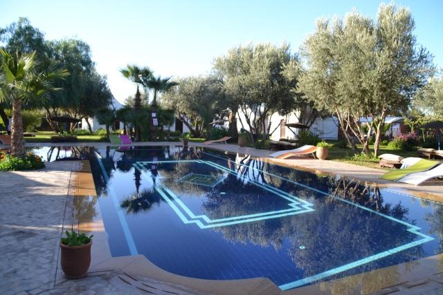 Camping à Marrakech - Page 3 Dsc_2319