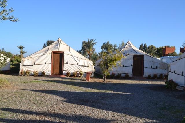 Camping à Marrakech - Page 3 Dsc_2320