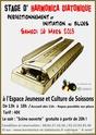 Stage diato-Blues : Chris DEREMAUX - Mars 2013 à Soissons (02) Affich11