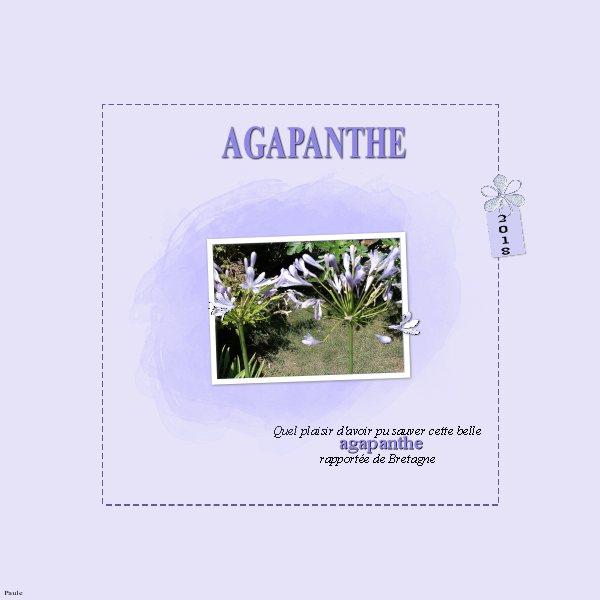 Pages réalisées avec le kit DCS fête ses 9 ans sous les tropiques. Agapan11