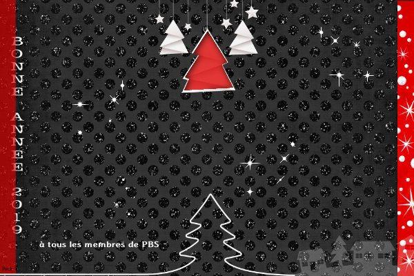 Challenge VISITEURS n°24 - Fond noir Bonne_13