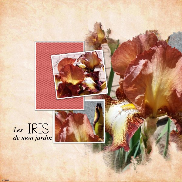 Pages réalisées avec les templates artsy 05 2019 Iris_l10