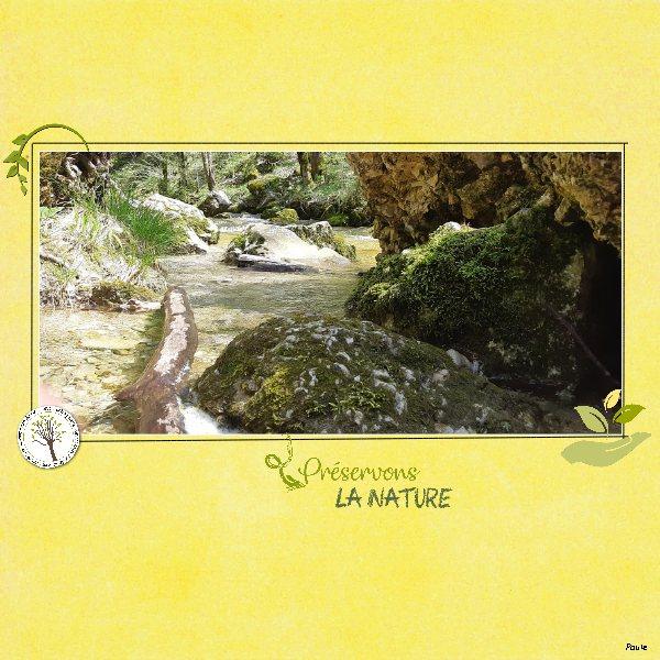 Pages réalisées avec le kit DCS et la planète bleue Nature11