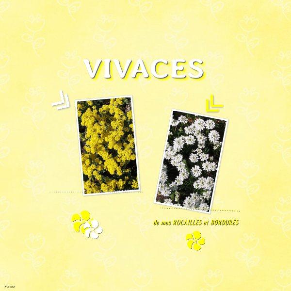 Pages réalisées avec les templates d'avril 2019 Vivace10