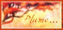 Adariel, forum Bouton10