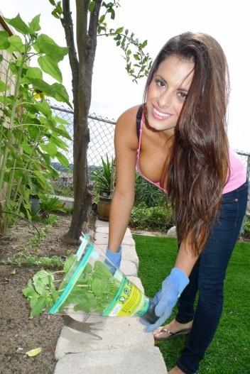maya hadi - Gardening Garden10