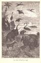 Lecture en commun Jules Verne - Page 7 Centre11