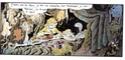 [BD] Joann Sfar - Page 2 France11