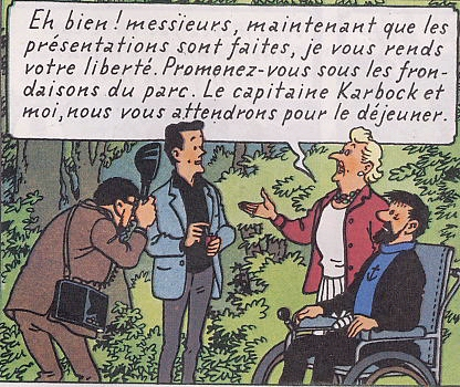 Certains rosiers ont des fleurs aux couleurs changeantes au fil des saisons Tintin10
