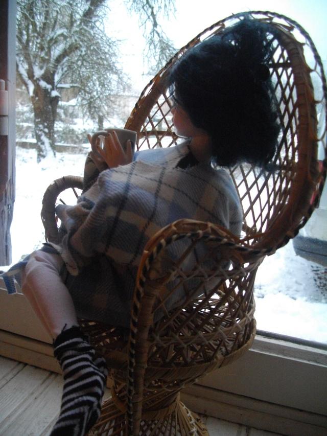 THEME DE JANVIER  2013 : Ellowyne se met au chaud - Page 3 Imgp8013