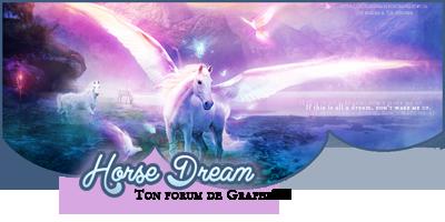 ✘ Horse Dream 40010