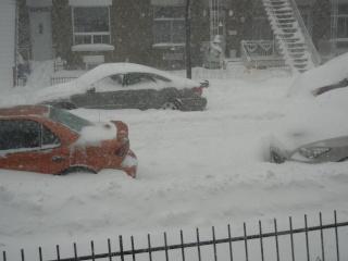 La tempête du 27 décembre 2012 Dscn1212