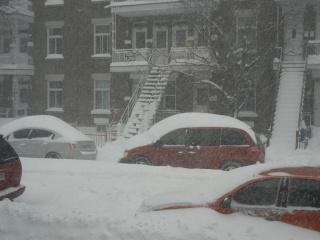 La tempête du 27 décembre 2012 Dscn1215