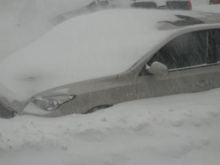La tempête du 27 décembre 2012 Dscn1216