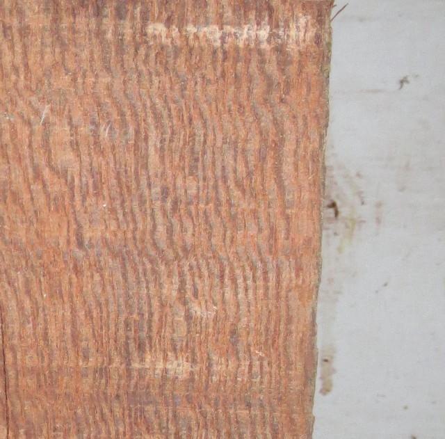 Ironwood..300 kg. of it Img_1717