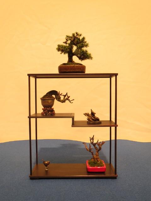 """Trees and details, that caught mye eye, at """"Noelanders"""" Img_1719"""