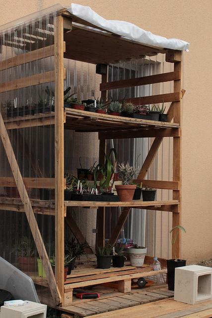 abris pour plantes 2232