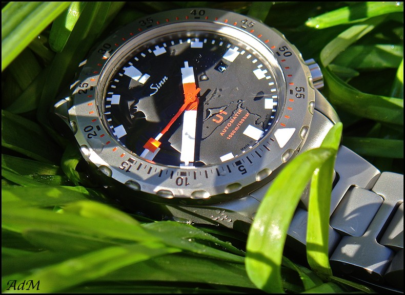 stowa - La montre de plongée du jour - tome 3 Sinn_n10