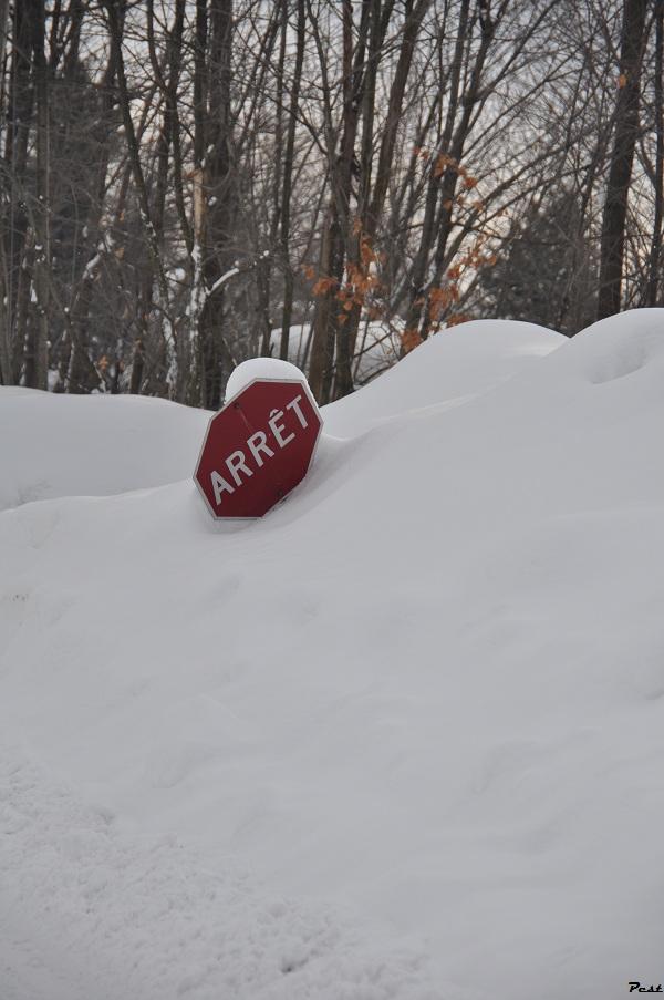 Bon Jeudi Snow_s10