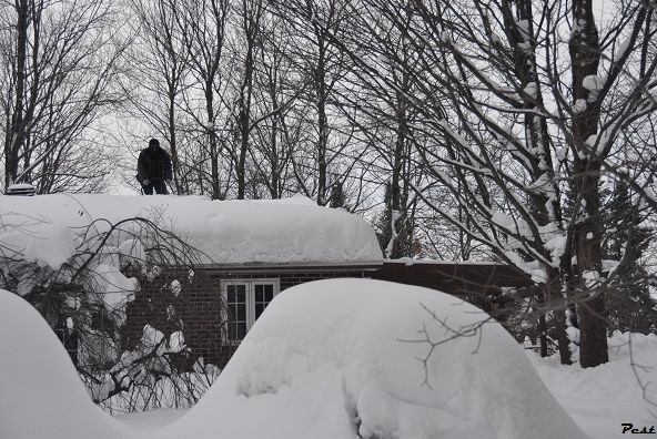 Bon Jeudi Snow_s12