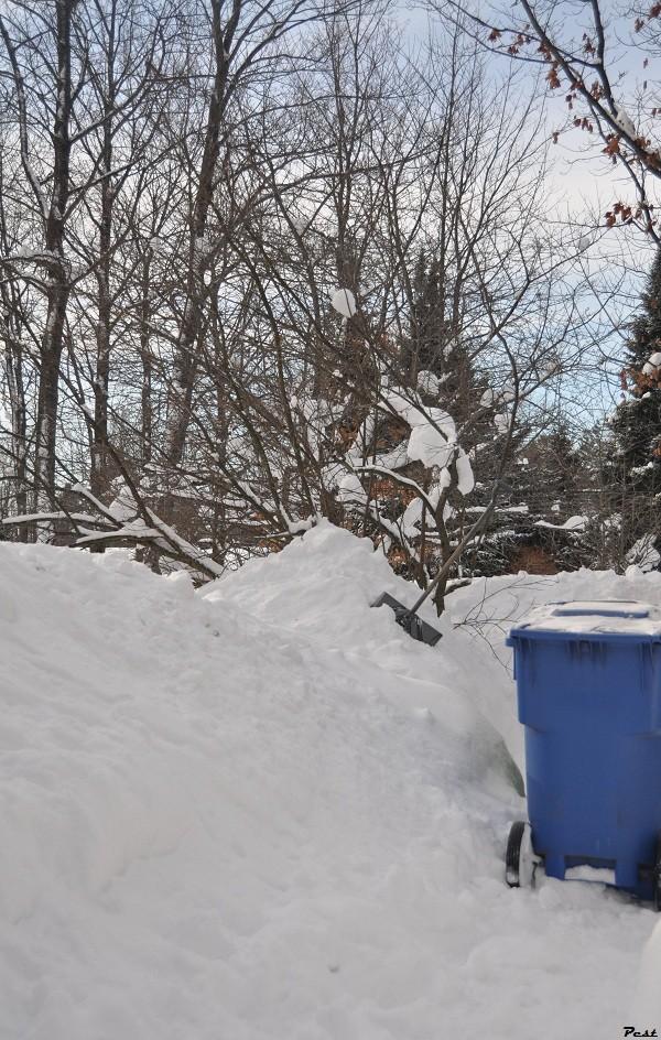 Bon Jeudi Snow_s13