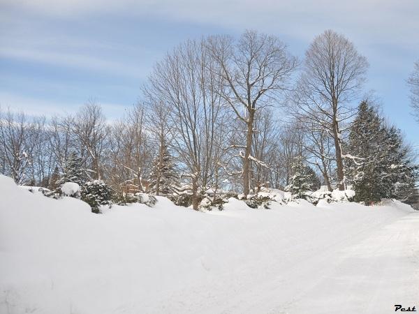 Bon Jeudi Snow_s14