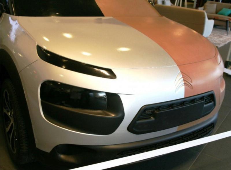 """""""Les Citroën C4 Cactus ne naissent pas dans les choux ni dans les roses.""""  17_c4_10"""