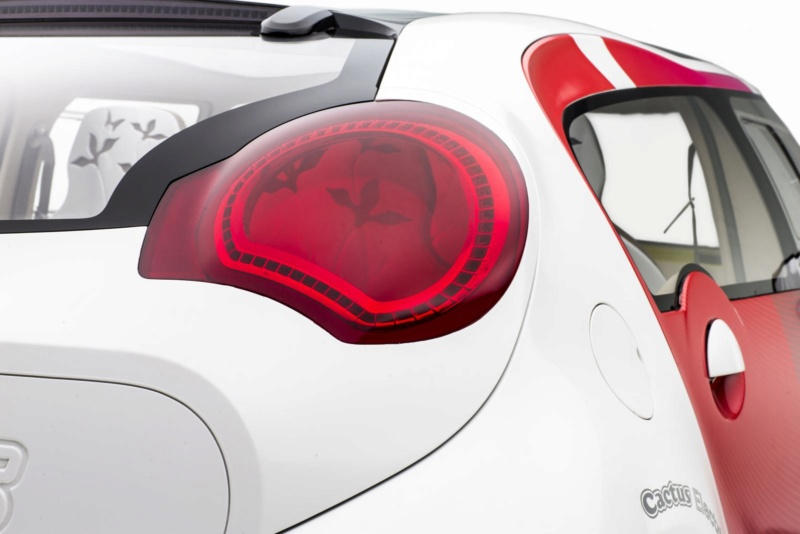 2007 - Citroën C-Cactus : Minima comme la TPV ? _02w8110