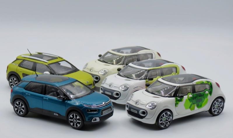 """""""Les Citroën C4 Cactus ne naissent pas dans les choux ni dans les roses.""""  Img_3510"""