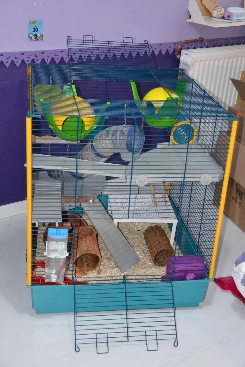Vends Cage Furet XL en RP Dsc_0612